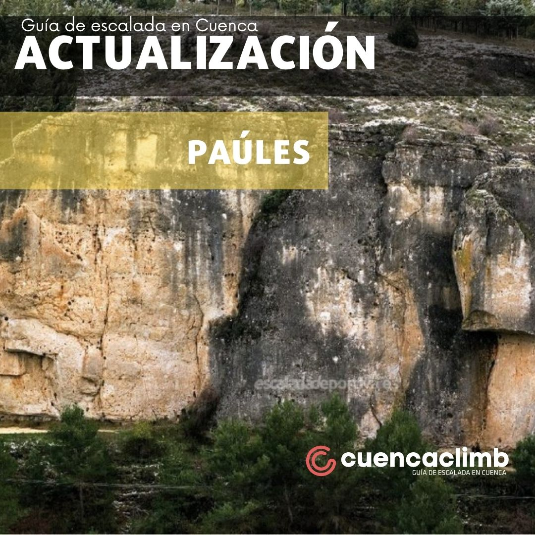 ACTUALIZACIONES SECTOR PAÚLES